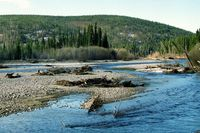 Fairbanks-alaska-chena-river-3_o